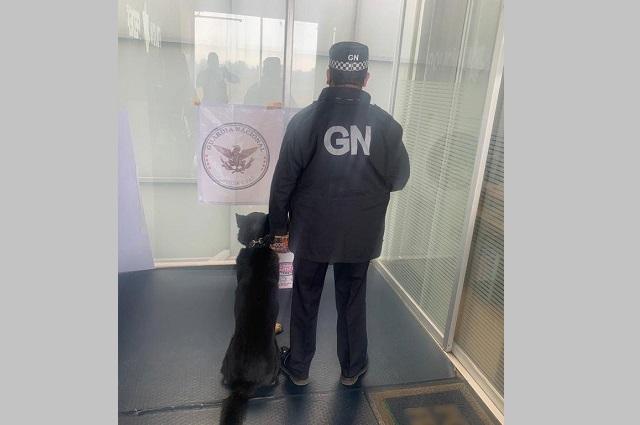 GN decomisa 10 kilos de pólvora en paquetería de Puebla