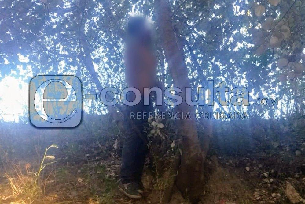 Hallan cuerpo con heridas y colgado en un árbol en La Guadalupana
