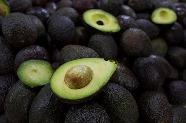 Hasta en 40 pesos se vende en Puebla el kilo de aguacate, informa la  Profeco