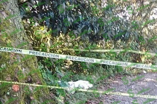 De un balazo matan a mujer frente a su hijo, en Zihuateutla