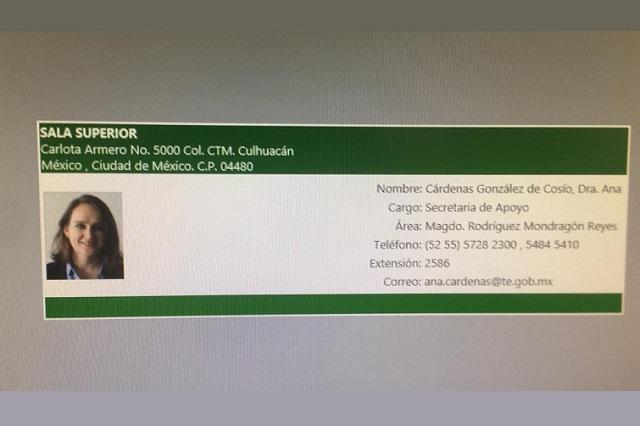 Denuncian conflicto de interés de Cárdenas y magistrado del TEPJF