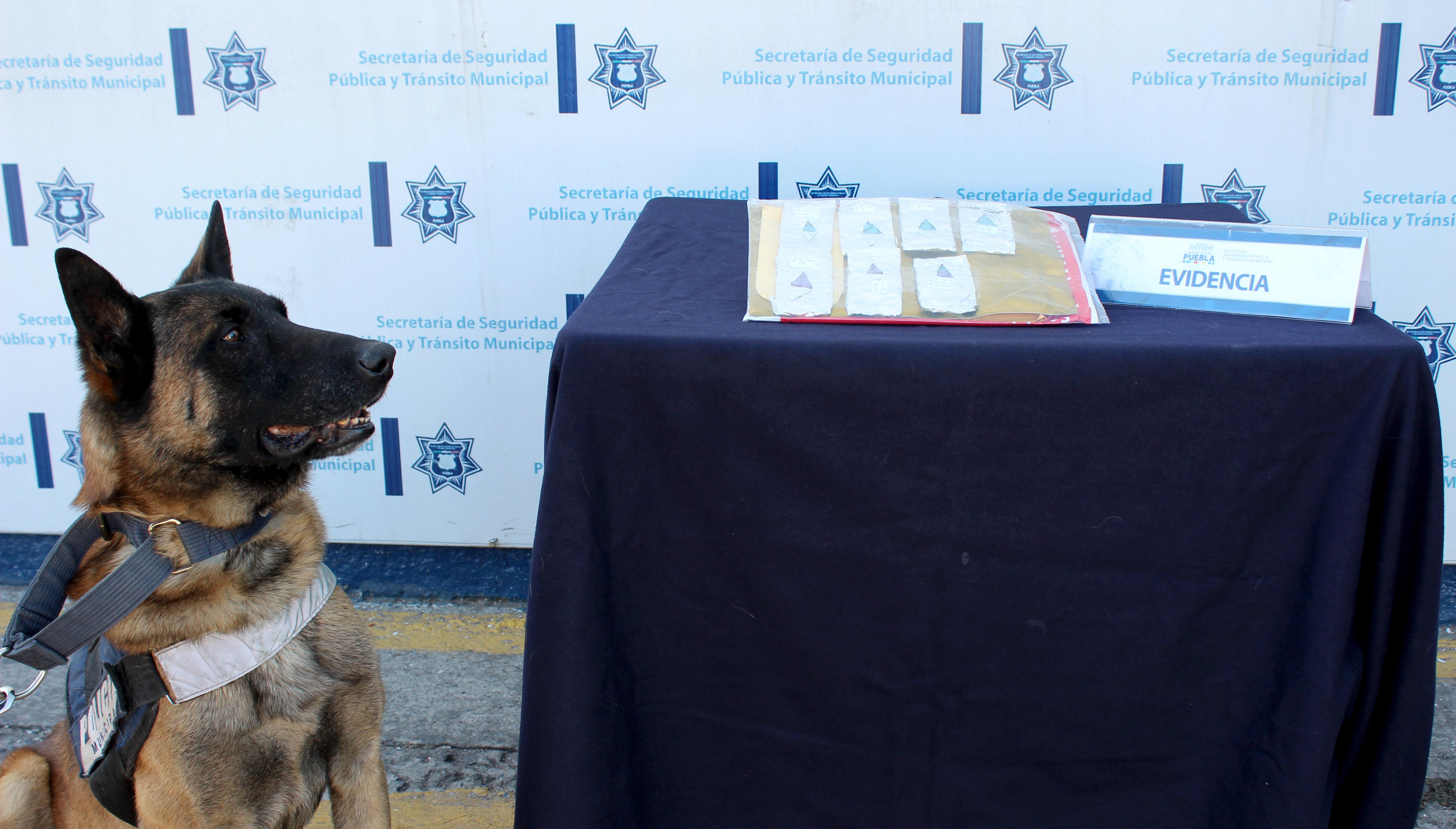 Detiene policía municipal a dos personas con droga en la CAPU