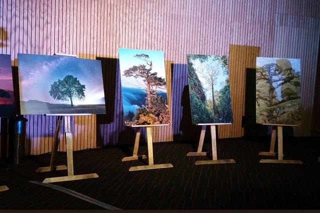 Invita Conafor a concurso nacional de fotografía Visión Forestal