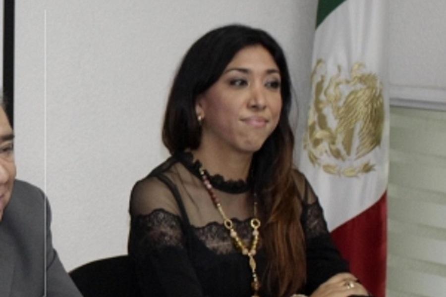 Queja ante INE por violencia en redes contra candidata PVEM