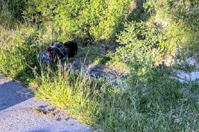 Interceptan y asesinan a balazos a joven en Acatzingo
