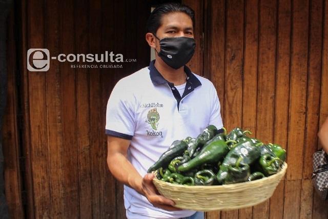 Baja venta esperan productores de insumos del Chile en Nogada