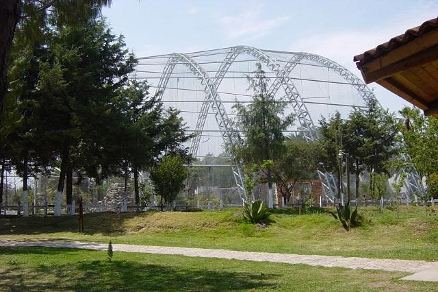 Auditoría ciudadana para el Parque Flor del Bosque, piden ambientalistas