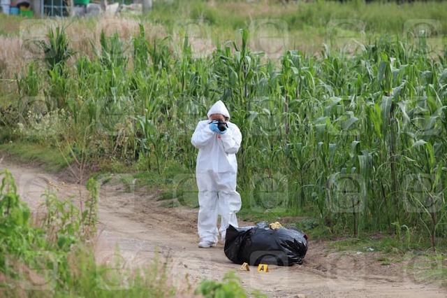 Hallan cuerpos embolsados en terrenos de Tecamachalco