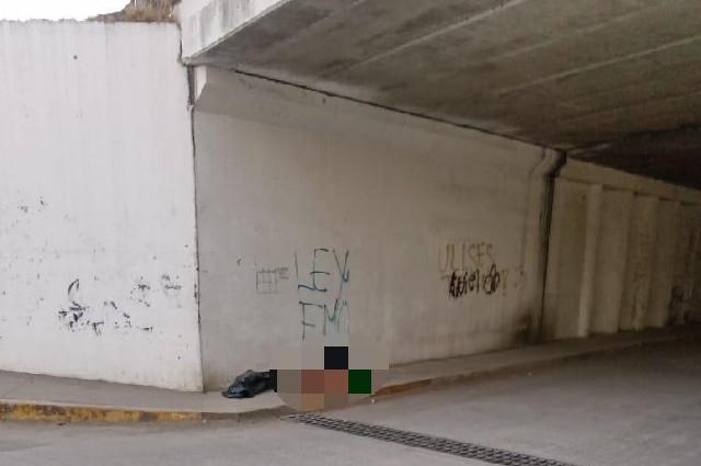 Hallan cuerpos desmembrados bajo puente de la México-Puebla