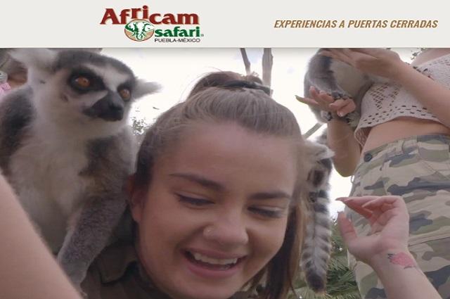 Africam Safari cierra sus puertas por disposición general