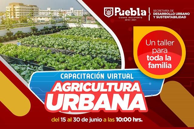 Ofrece Gobierno de la ciudad capacitaciones de autosuficiencia alimentaria