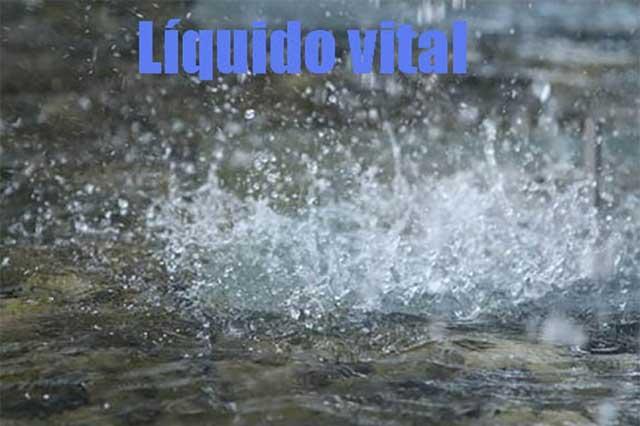 El agua, vital para el buen funcionamiento del cuerpo humano