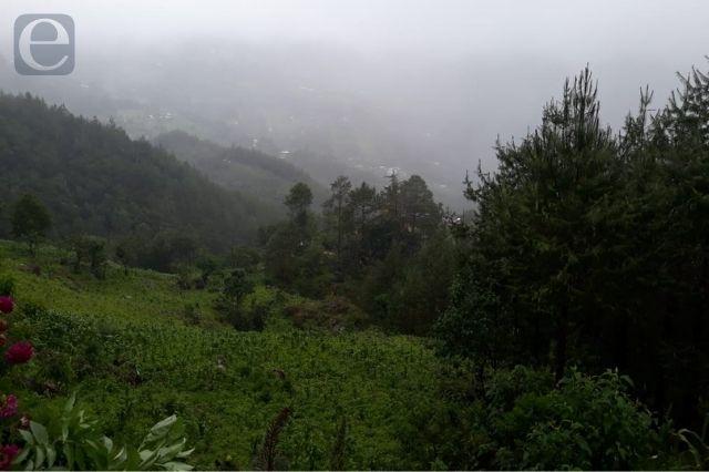Intensas lluvias y viento afectan a 50 productores de Ajalpan