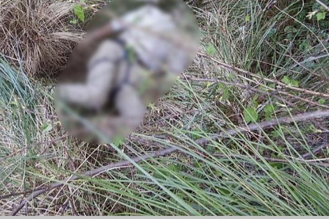 Hallan muerto a militar de EU que iría al Pico de Orizaba
