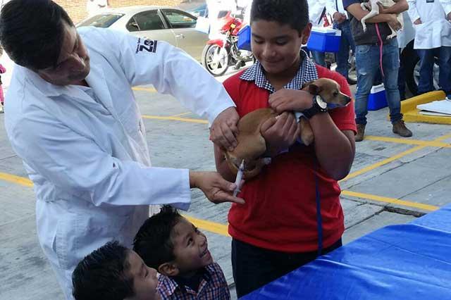 Ayuntamiento de Puebla aplicará 5 mil dosis de vacuna antirrábica