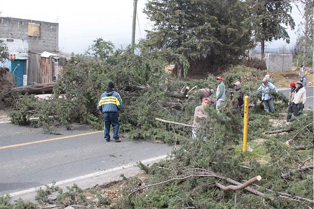 Reporta el gobierno estatal sólo 650 casas afectadas por vientos