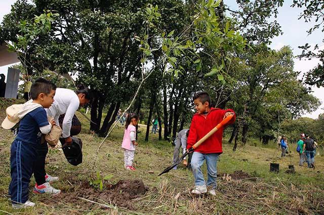 Reforestan Área Natural Protegida Bioparque La Calera