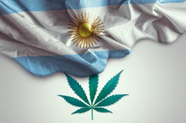 Argentina aprueba proyecto de cannabis industrial y medicinal
