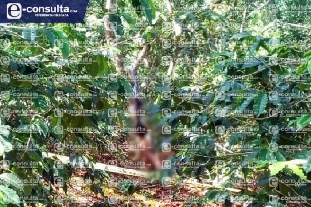 Hallan a menor de edad colgado en un árbol en Xicotepec