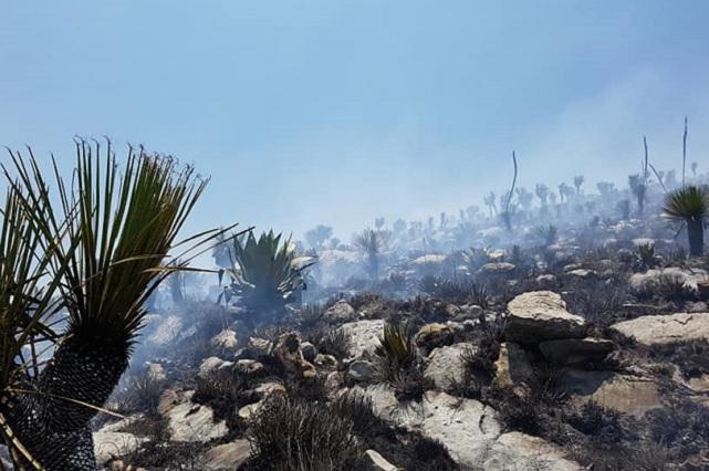 Pobladores luchan contra incendio en tramo de Reserva de la Biosfera