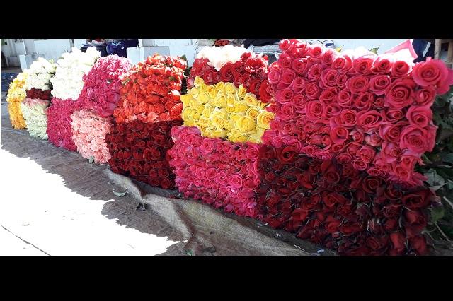 En Atlixco venden 1 millón de rosas este 14 de febrero