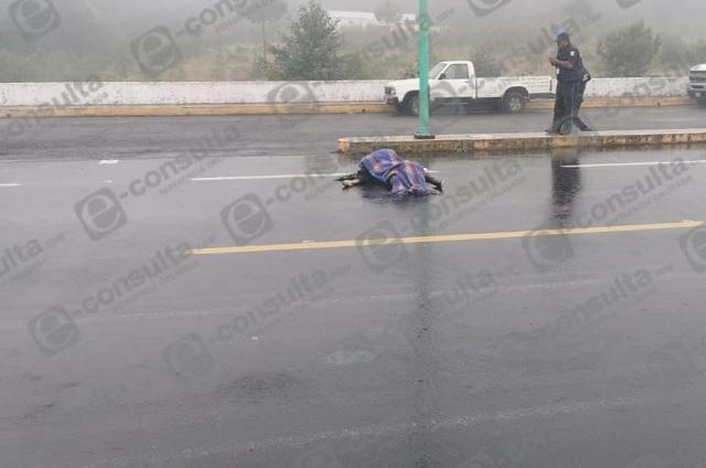 Septuagenario muere atropellado en carretera Virreyes - Teziutlán
