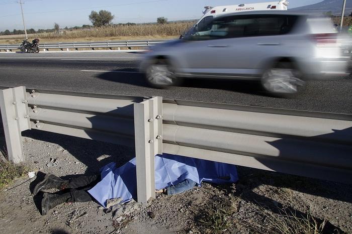 Aparece atropellada en autopista Siglo XXI, cerca de Metepec