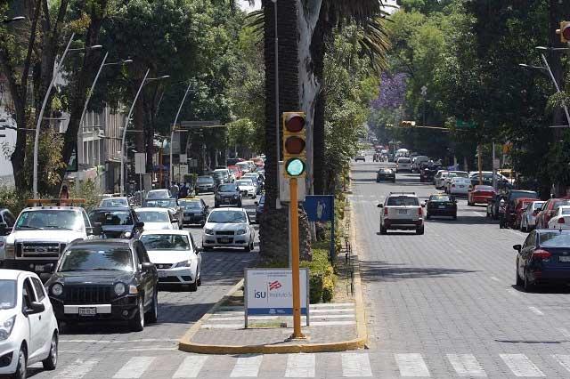 Empresa constituida en 2011 gana obra en Avenida Juárez