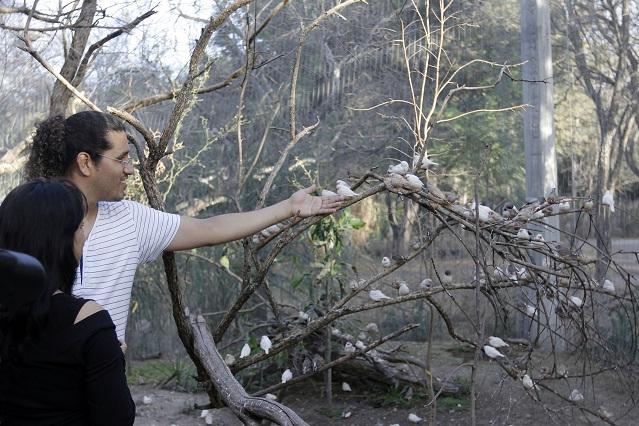 Mabek hará las obras del Aviario  del Parque Ecológico por 9.6 mdp