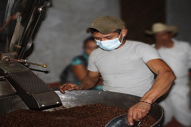Puebla es tercer lugar nacional por valor de su producción de café