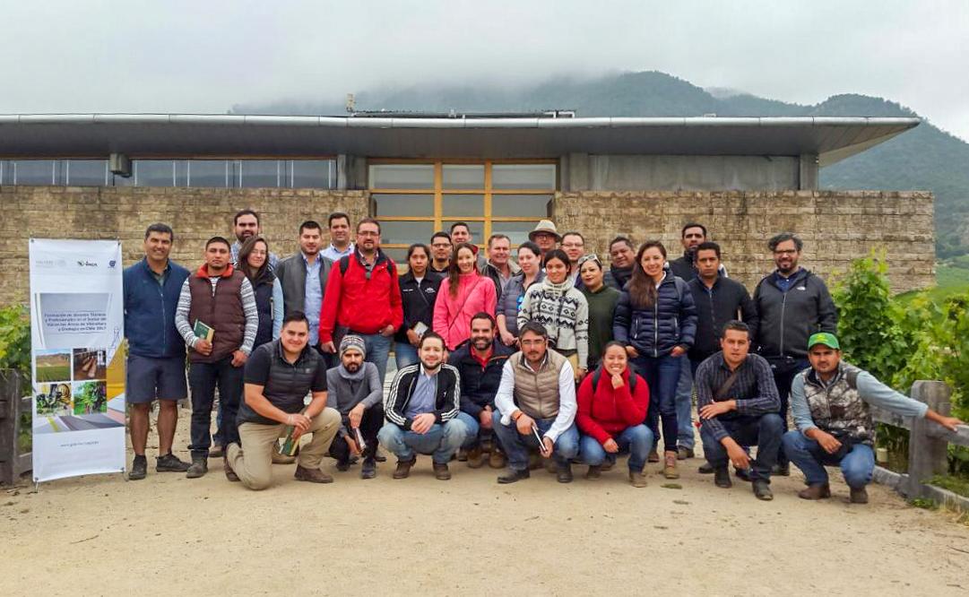 Jóvenes se capacitan en vitivinícultura en Chile, con apoyo de la Sagarpa