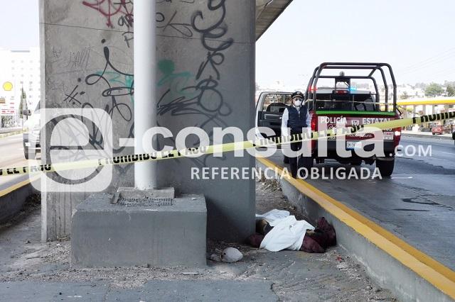 Muere atropellado en La María, sobre la México-Puebla