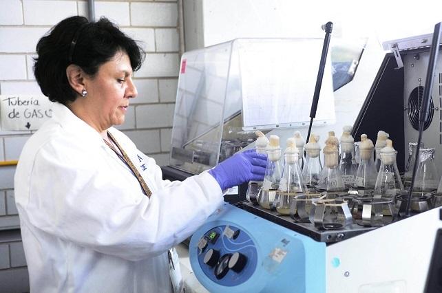 Patentan proteínas contra bacteria de alta mortalidad