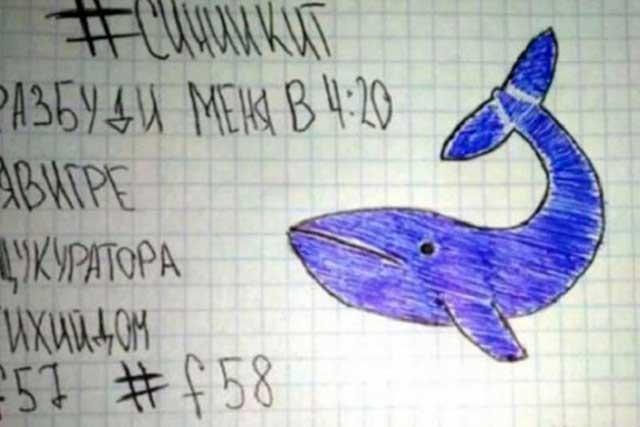 Detienen en Rusia al cerebro del macabro juego La Ballena Azul