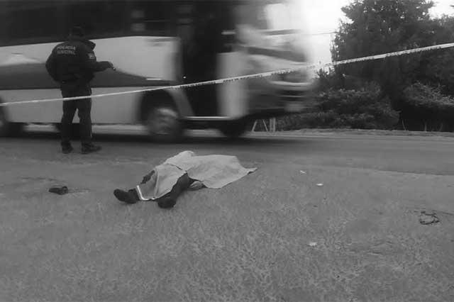 Mueren joven y su mascota al ser atropellados en la federal a Tlaxcala