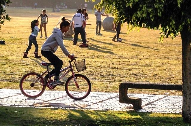 Celebran este 3 de junio el Día Mundial de la Bicicleta