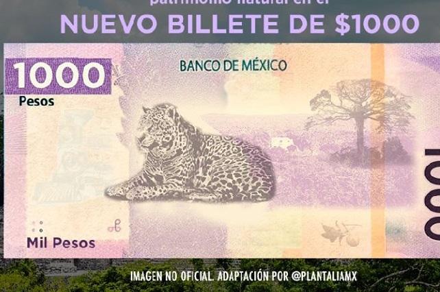 El Jaguar y la ciudad de Calakmul aparecerán en el billete de mil pesos