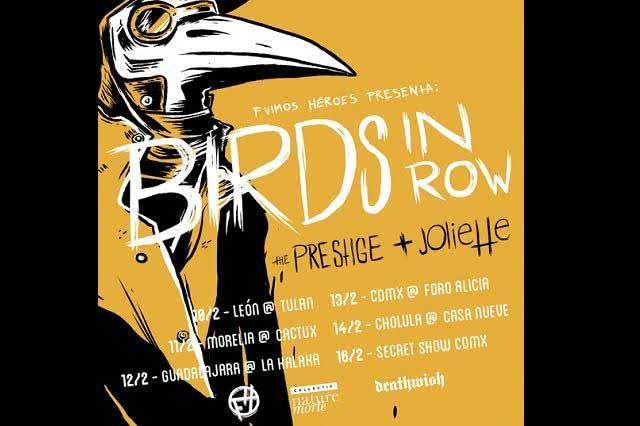 Birds in row: Punk desde Francia para Puebla