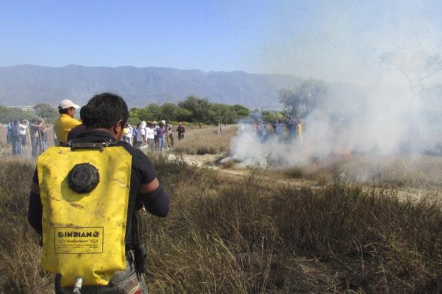 Tres incendios activos en el estado: Protección Civil