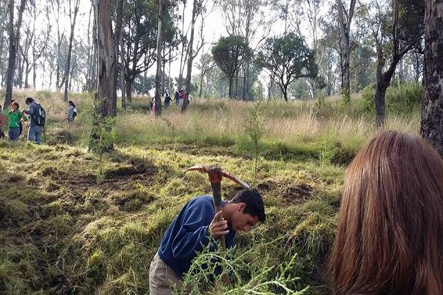 Hasta 253.2 mdp podría costar Parque del Cerro de Amalucan
