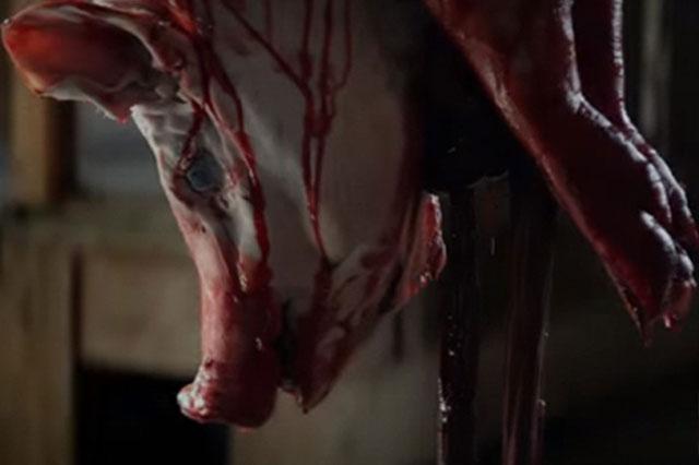 Re-make de Cabin Fever: De la Cabaña sangrienta y la batología en el cine