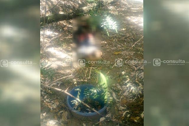 Hallan cadáver devorado por los animales en Tlalancaleca