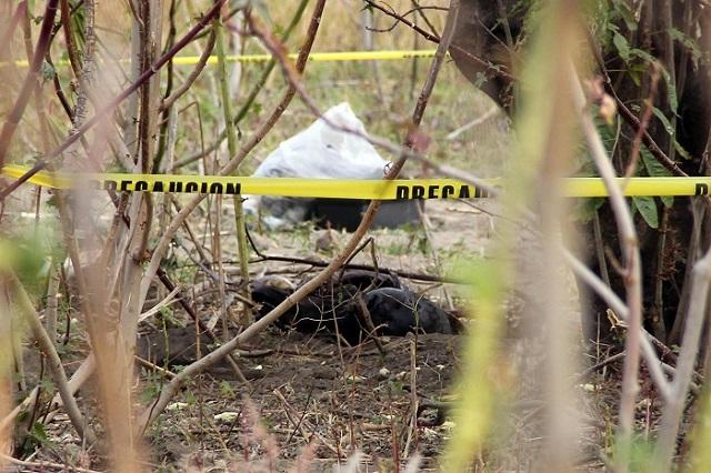 Torturan y queman a hombre en límites de Puebla y Morelos
