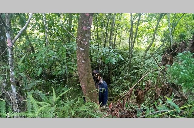 Hallan cadáver en estado de descomposición en Xicotepec