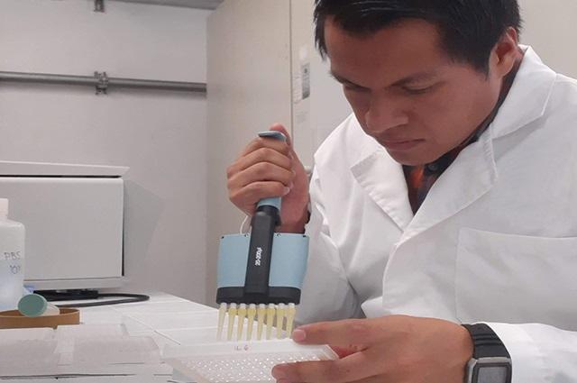 Cadmio, un factor de riesgo en el desarrollo de diabetes: BUAP