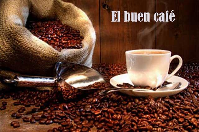 El consumo de café aporta grandes beneficios a nuestra salud
