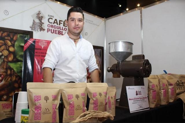 Cafeticultores de Puebla sufren bajos precios y buscan otro oficio