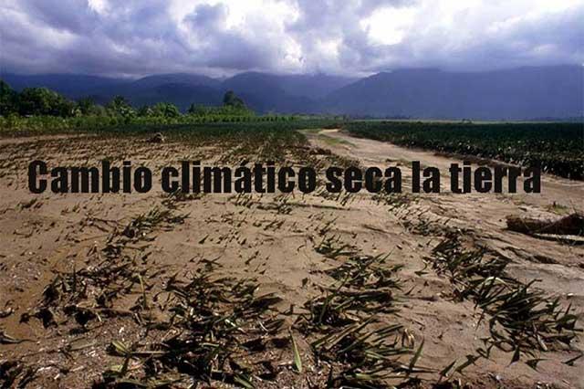 El mundo necesita más esfuerzos ante calentamiento global