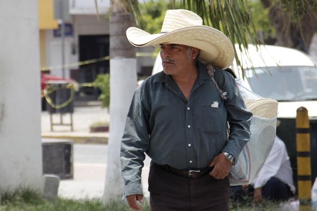 Mixteca Poblana sufre onda de calor y llega a los 42 grados