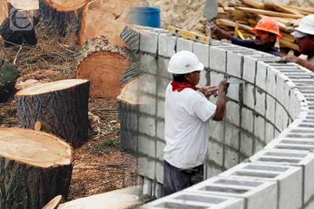 Acecha Trasierra 11 hectáreas de bosque en Puebla para fraccionamiento